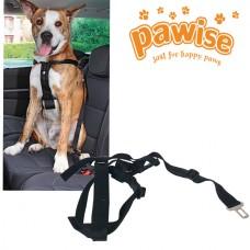 Pawise Emniyet Kemerli Köpek Tasması XL